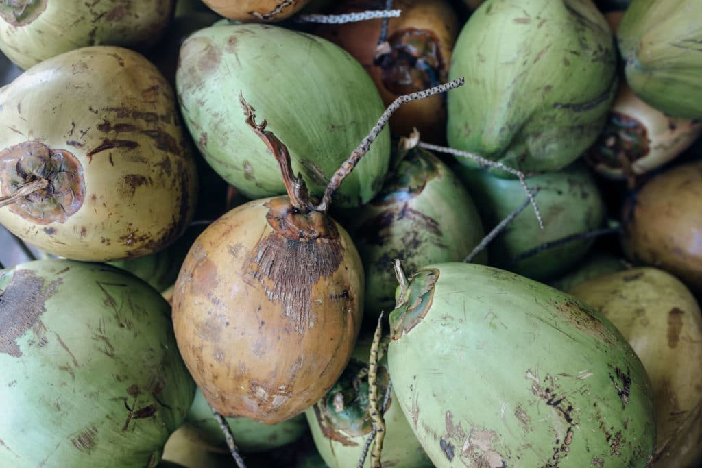 Travel photography Bali - Ubud Market - Coconut