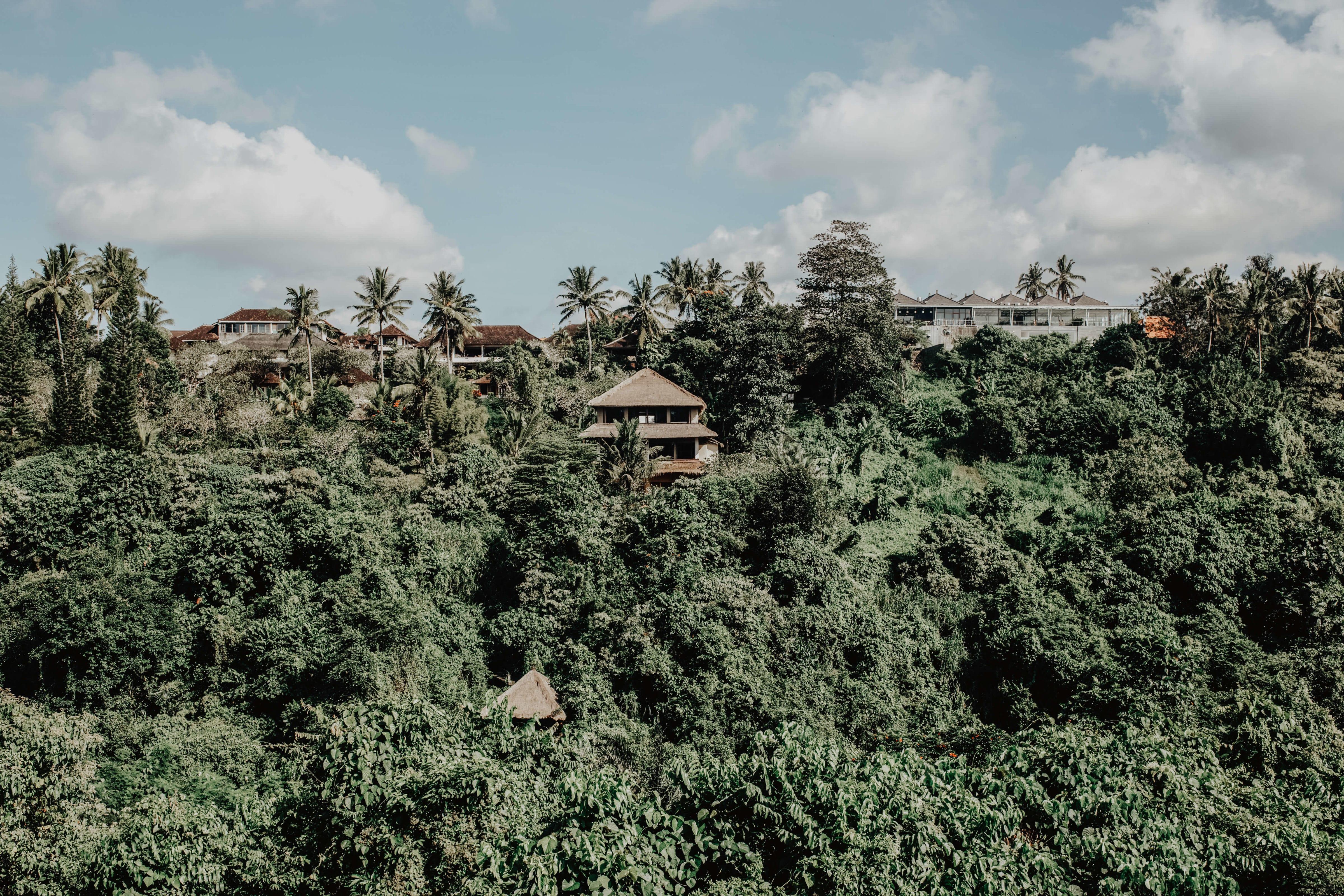 Travel photography Bali - Ubud - Campuhan Ridge walk - Panoramic view