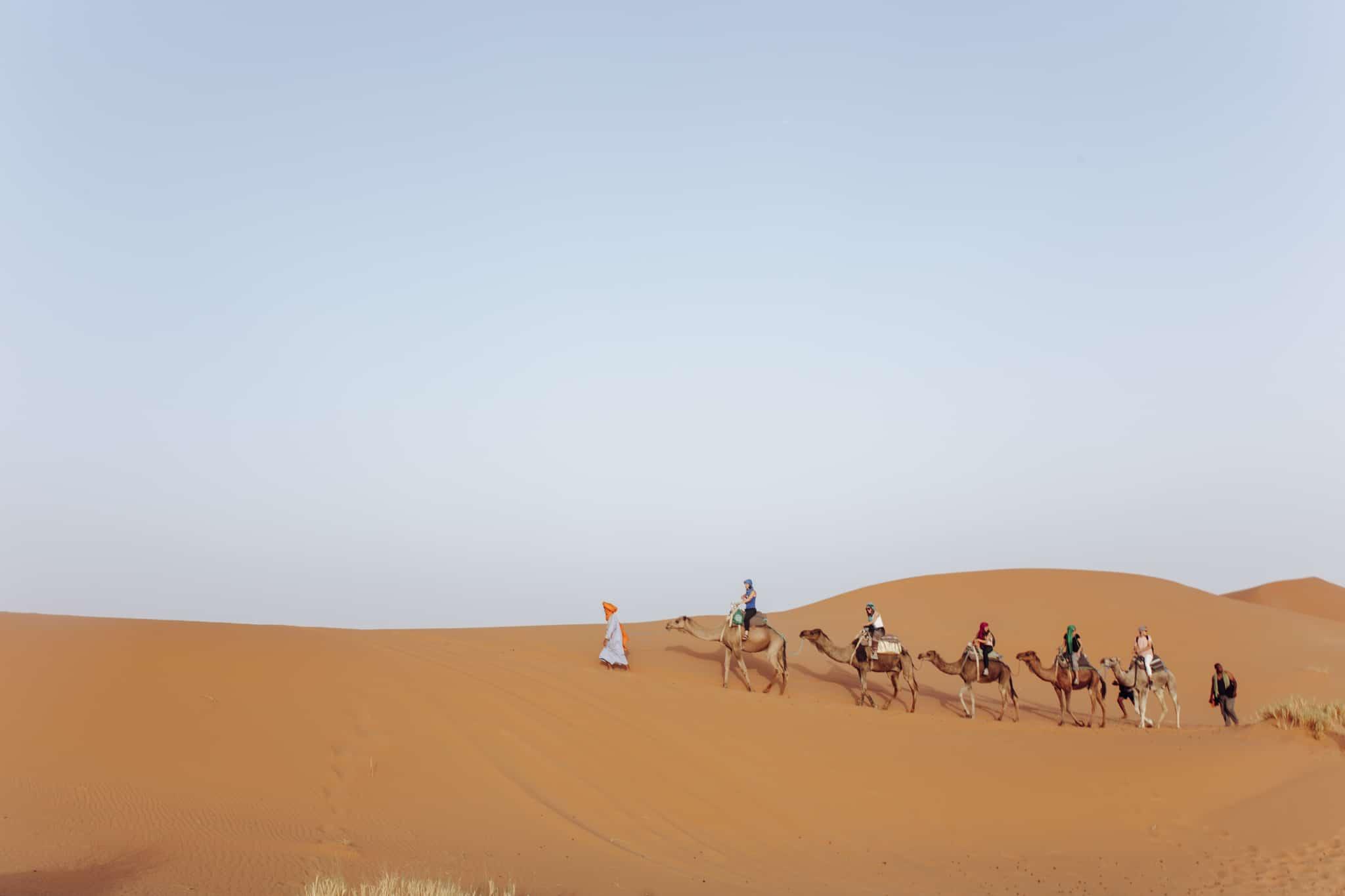 Camel train at Erg Chebbi